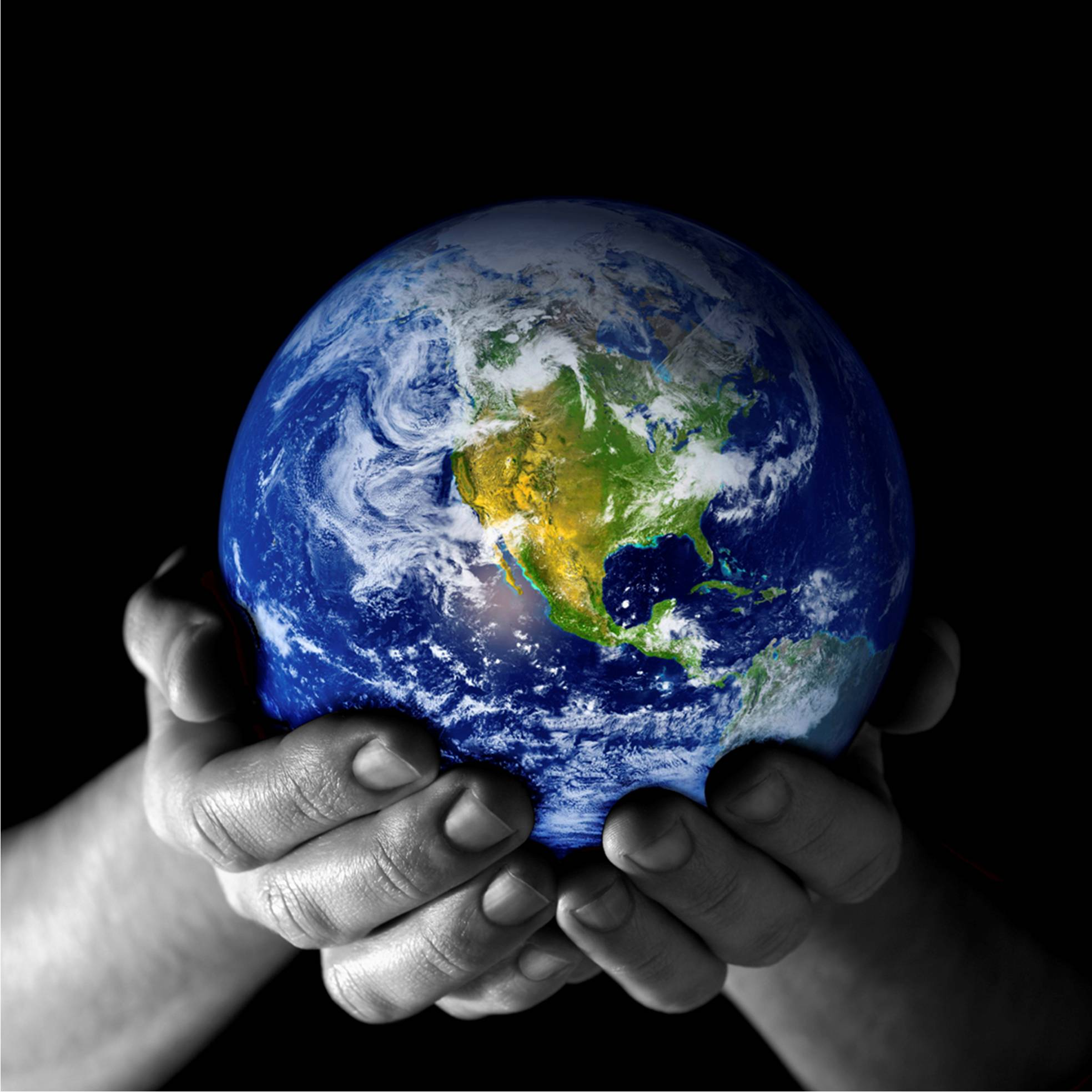 Sinergicom - Immagine - il mondo nelle mani